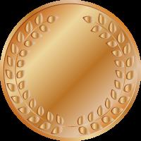 bronze_medal